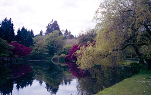 Lake In Spring At VanDusen Botanical Garden